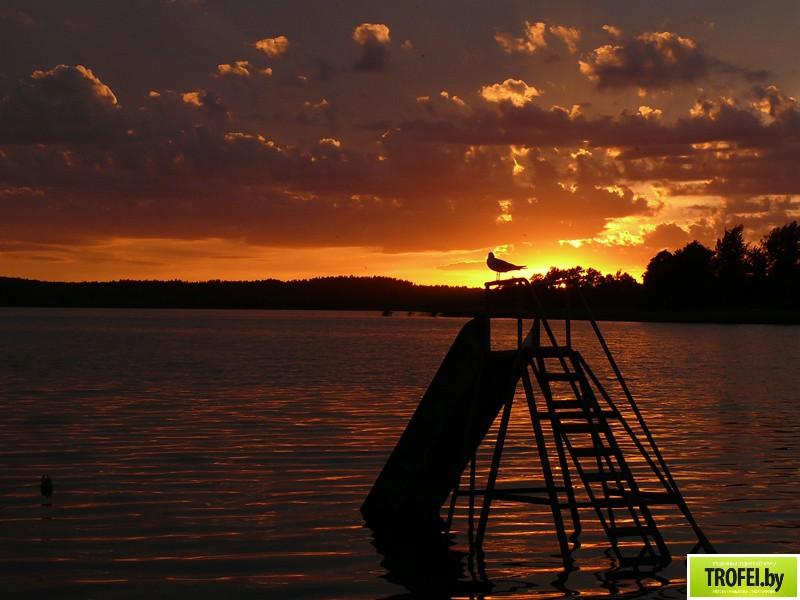 Озеро Береже. Браславские озера