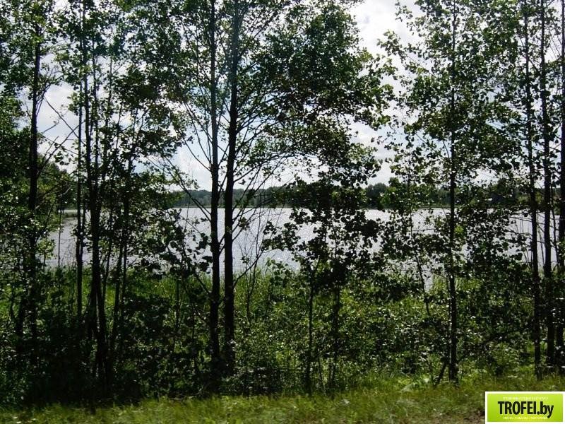 Озеро Дубро. Браславские озера