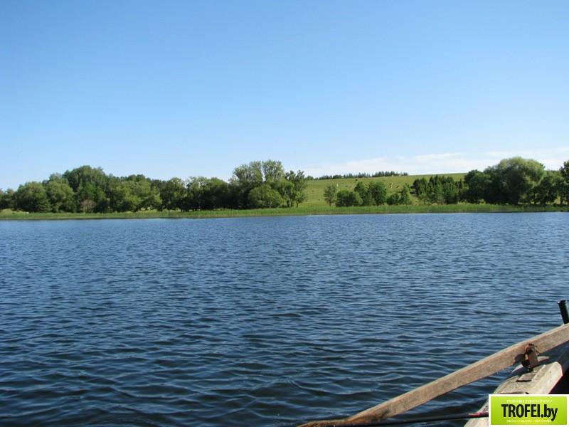 Озеро Недрово. Браславские озера