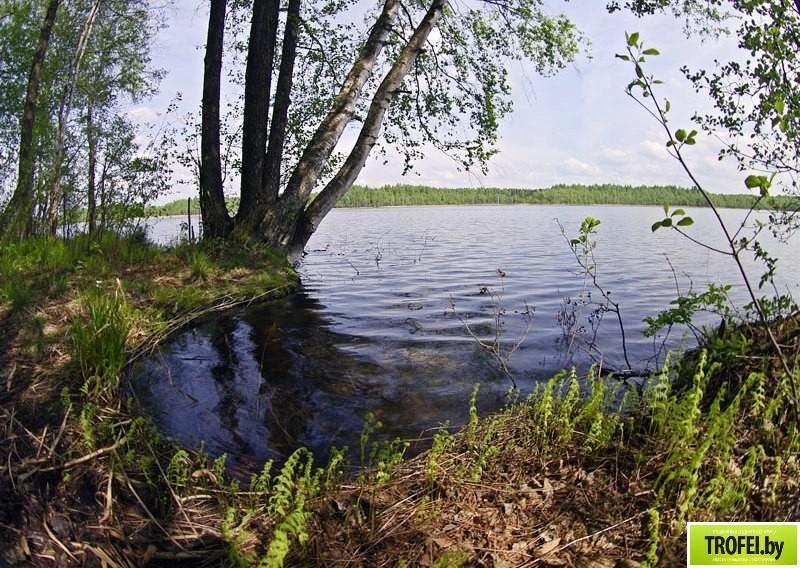 озеро Болта (Болто)
