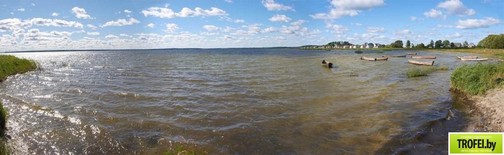Озеро Дривяты. Браславские озера
