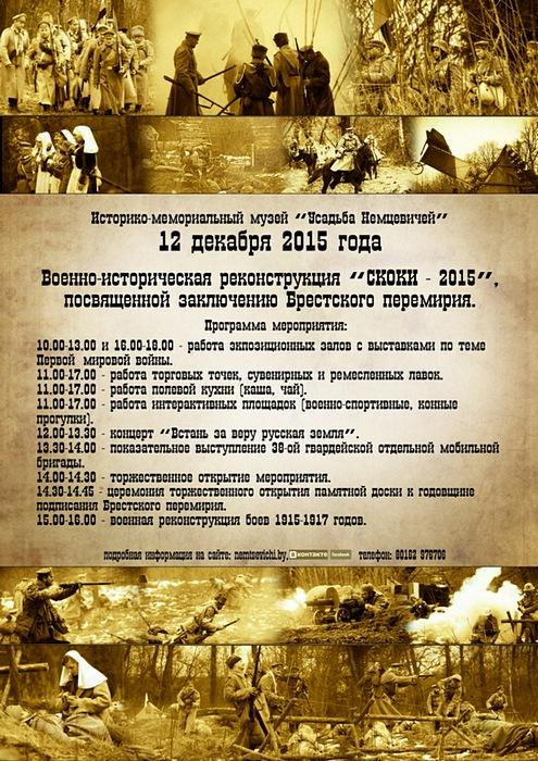 Программа СКОКИ 2015