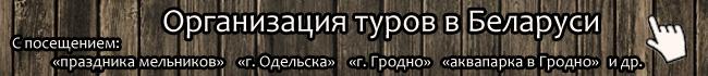 Организация туров в Беларуси