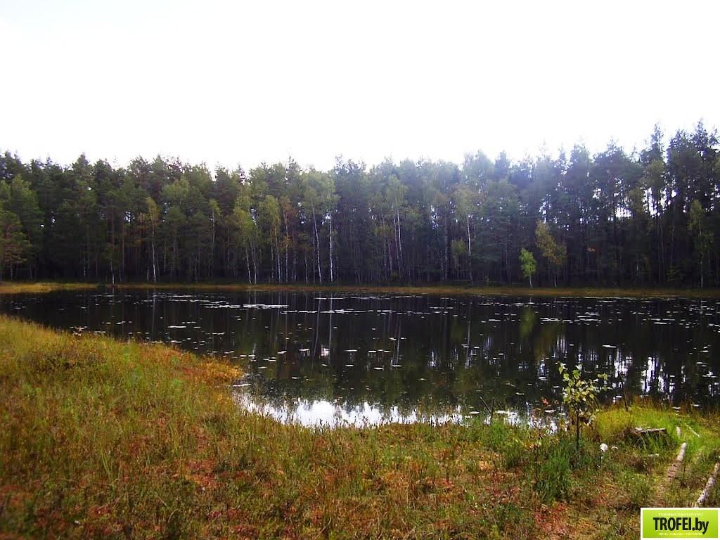 Озеро Волос Северный