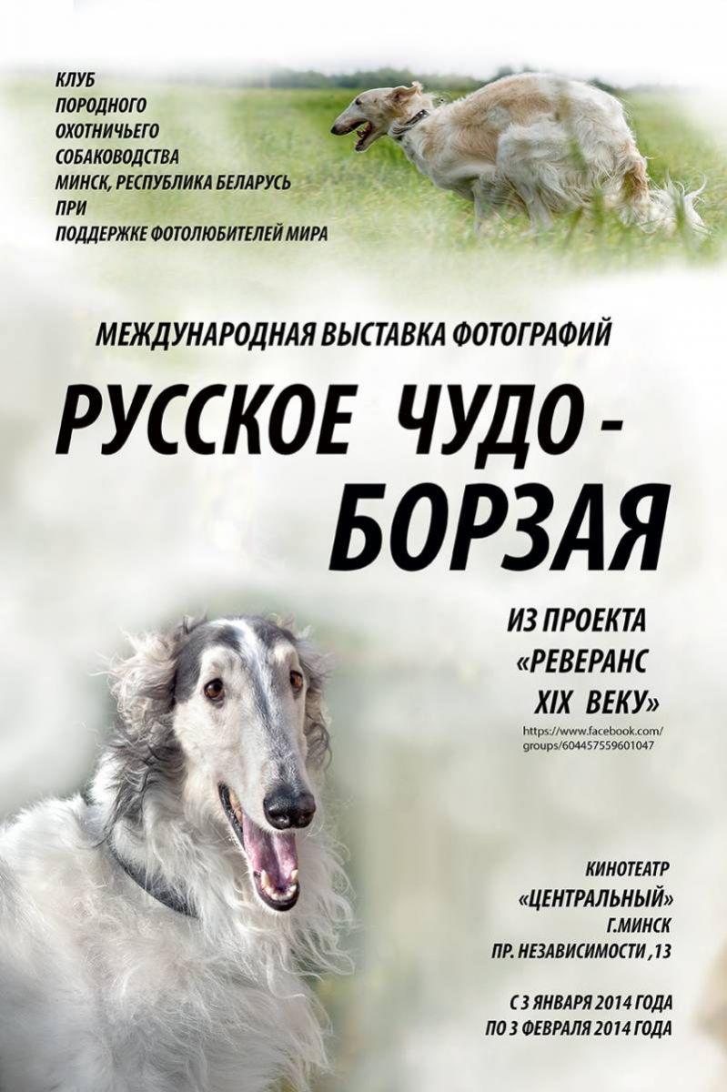 выставка фотографий Русское чудо - борзая